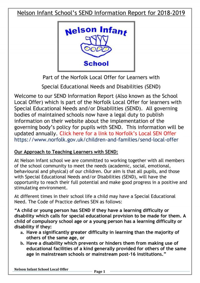 thumbnail of Nelson Local offer information report 18-19