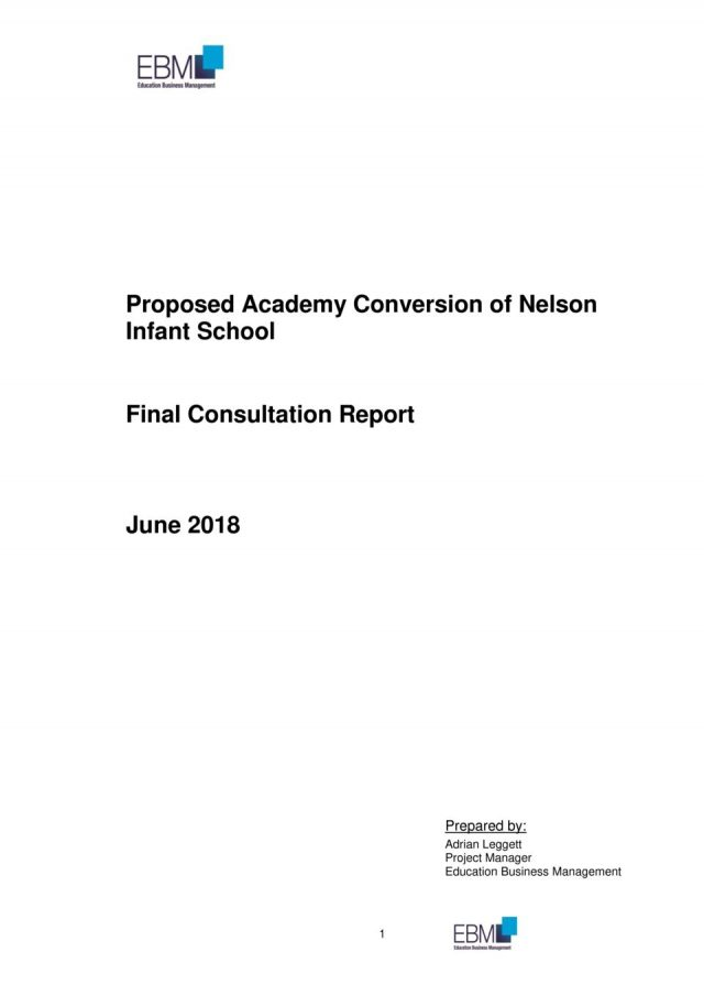thumbnail of Nelson Combined Consultation Report Final v1.0