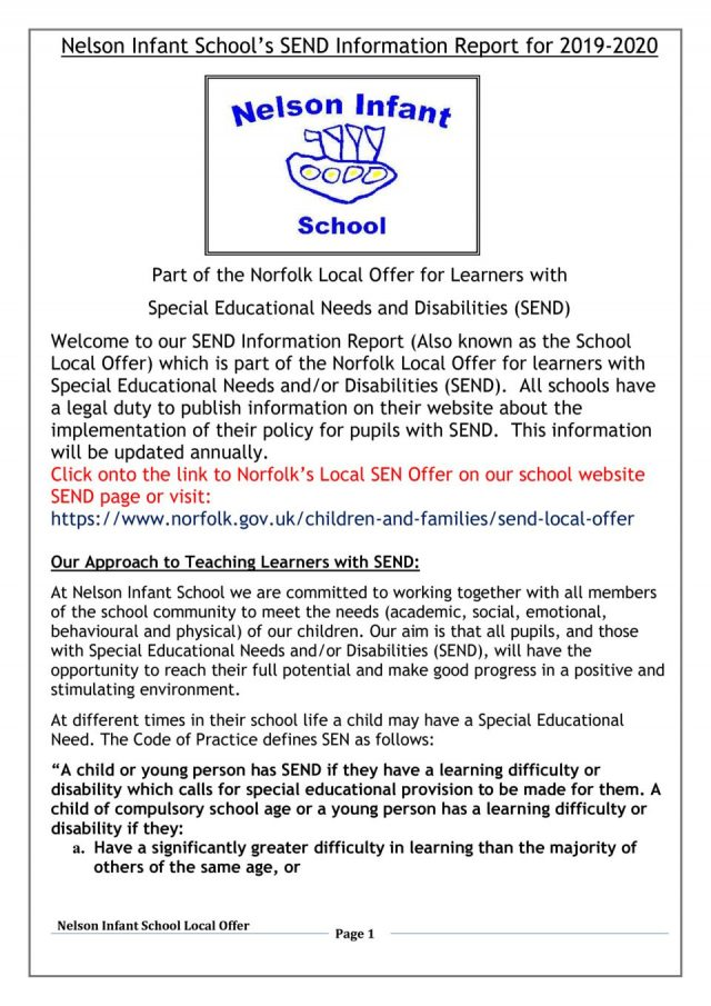 thumbnail of Nelson Local offer information report 19-20
